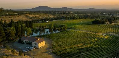Alger Vineyards