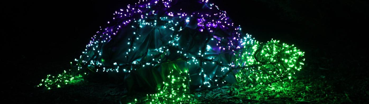 Redding Garden of Lights